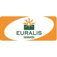 Oferta Seminte Euralis