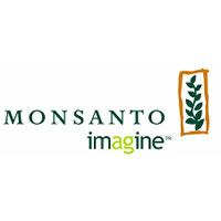 Oferta Seminte Monsanto