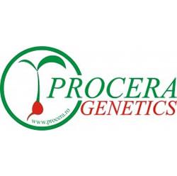 Procera Genetics