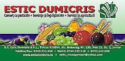 Estic Dumicris